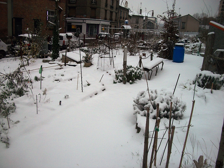 jardin-hiver-201311