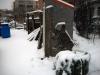 jardin-hiver-201313