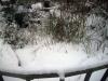 jardin-hiver-201320