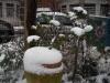 jardin-hiver-201322