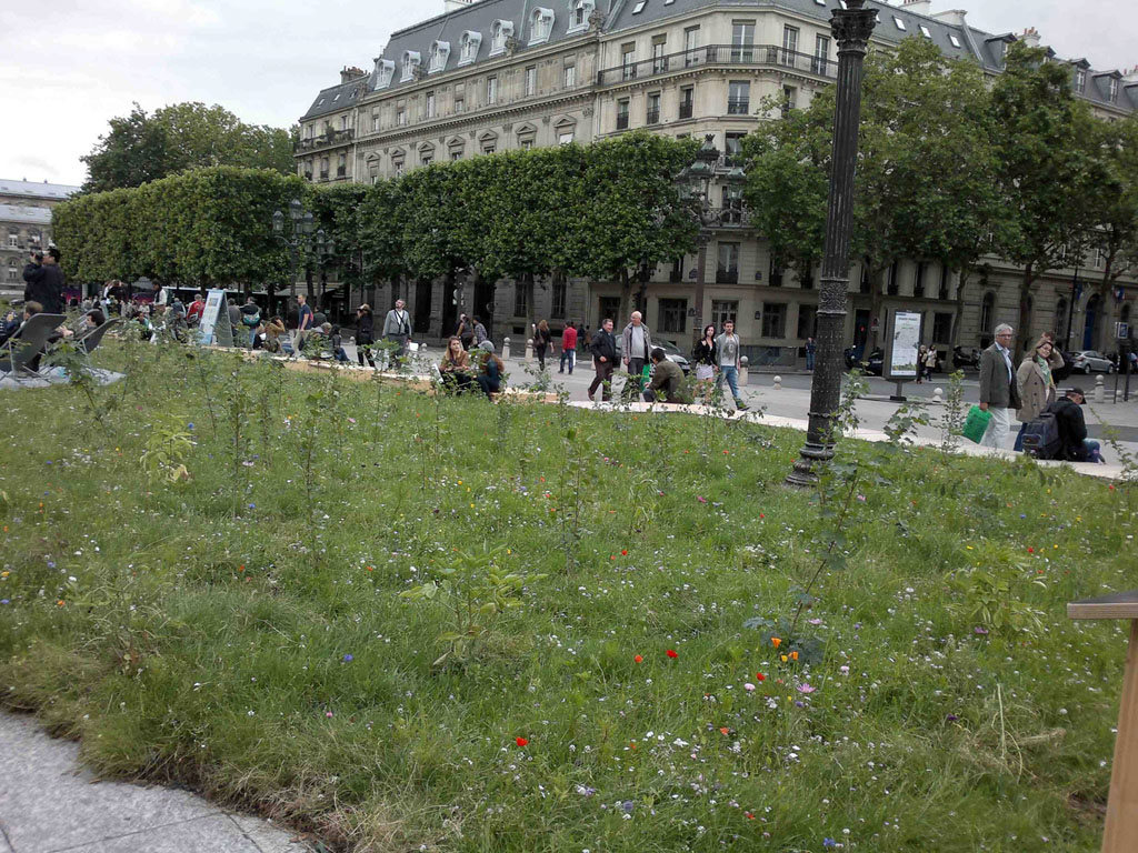 jardin-hotel-ville10